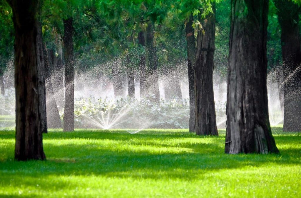 beautiful lawn being watered